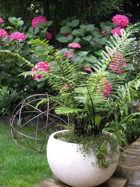 The metal sphere mimics and balances the rounded planter. The sphere can be moved so as not to cause damage to the grass