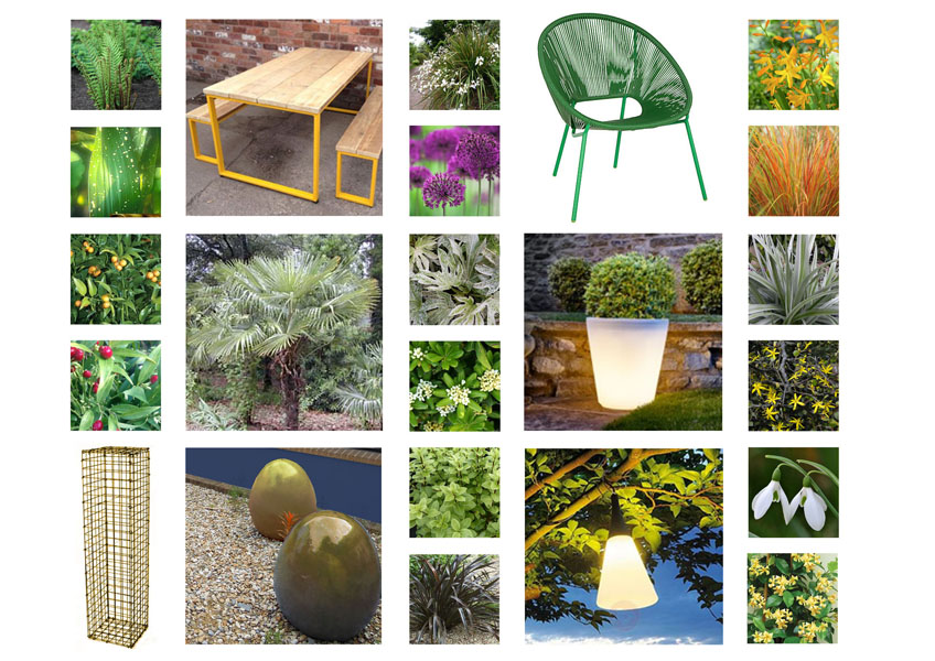 Moodboard with suggestions of plant choices and furniture